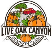 Live Oak Canyon Pumpkin Patch & Christmas Tree Farm, Redlands CA Logo